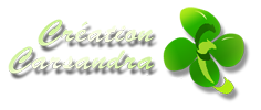 GAZON SYNTHETIQUE 34