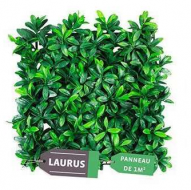 capture_laurus_2.png